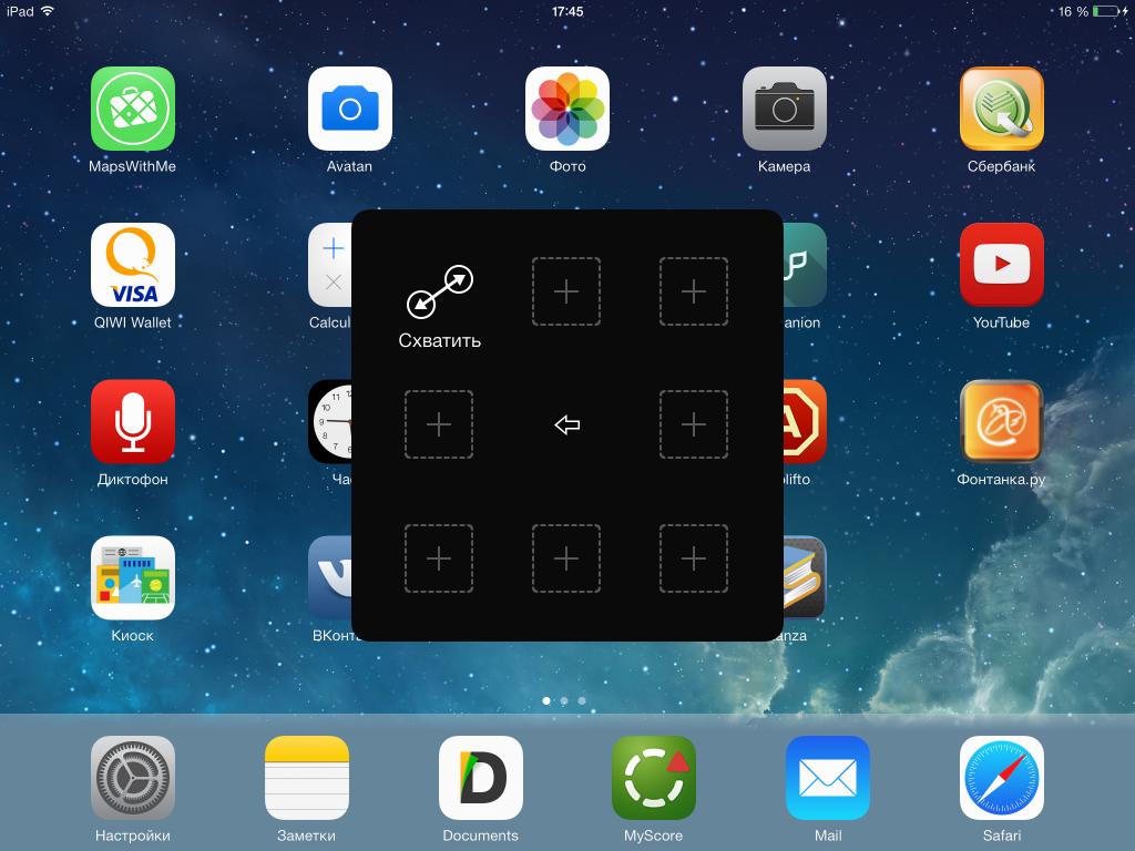 окружности головы поворот картинки на экране айфона насекомые характеристика, строение
