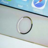 Замена/ремонт шлейфа кнопки «Домой» iPhone 5S